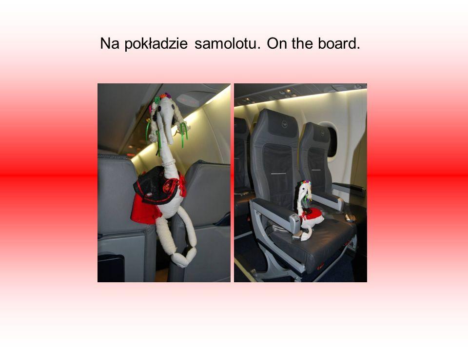 Na pokładzie samolotu. On the board.
