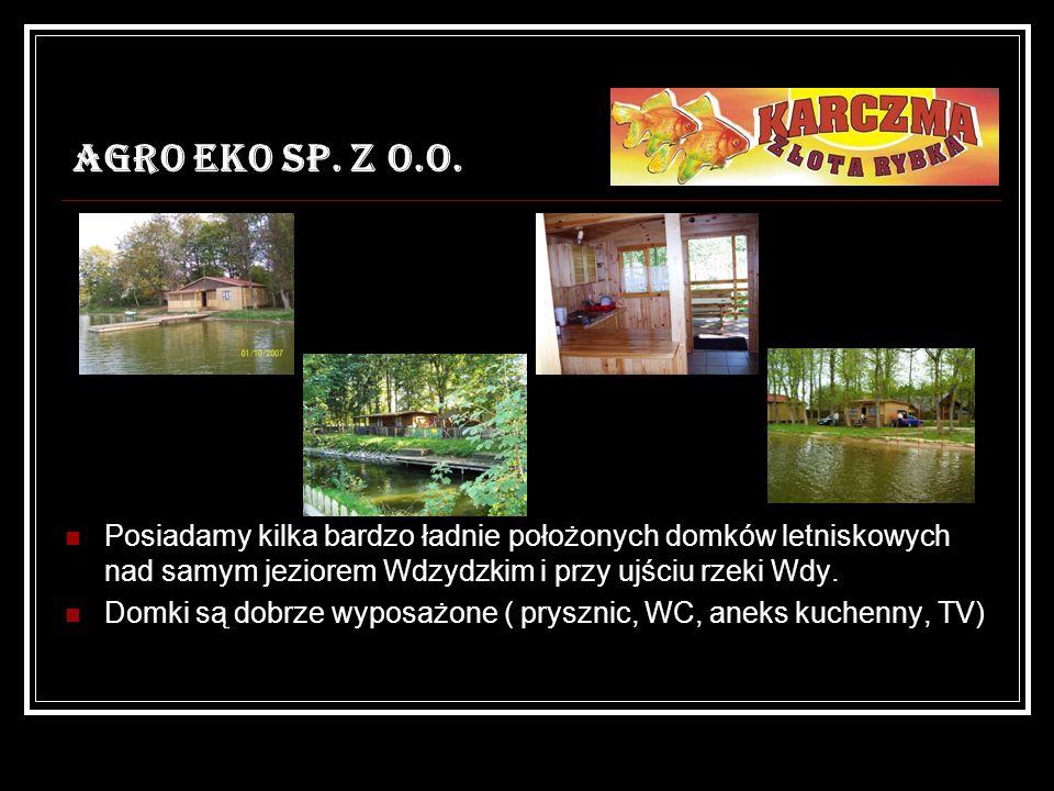 AGRO EKO SP. Z O.O. Posiadamy kilka bardzo ładnie położonych domków letniskowych nad samym jeziorem Wdzydzkim i przy ujściu rzeki Wdy. Domki są dobrze
