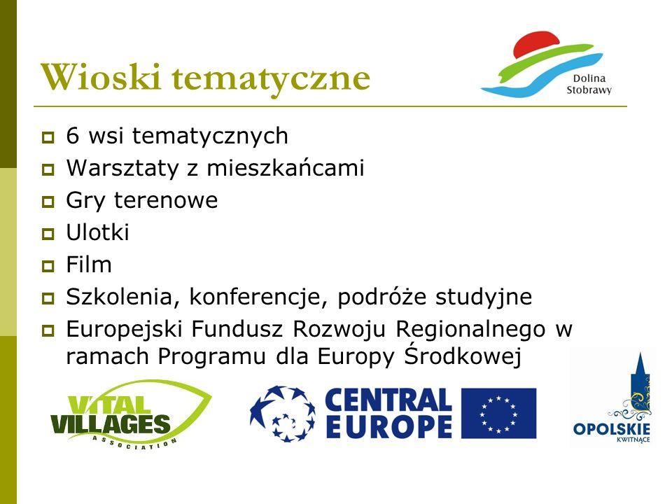 Wioski tematyczne 6 wsi tematycznych Warsztaty z mieszkańcami Gry terenowe Ulotki Film Szkolenia, konferencje, podróże studyjne Europejski Fundusz Roz