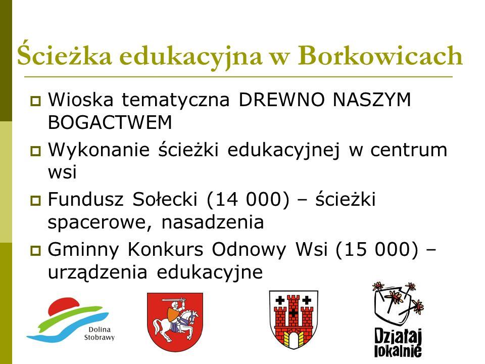 Ścieżka edukacyjna w Borkowicach Wioska tematyczna DREWNO NASZYM BOGACTWEM Wykonanie ścieżki edukacyjnej w centrum wsi Fundusz Sołecki (14 000) – ście