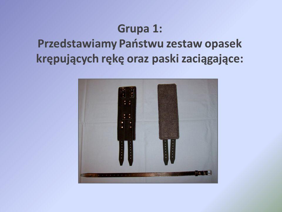 Grupa 1: Przedstawiamy Państwu zestaw opasek krępujących rękę oraz paski zaciągające: