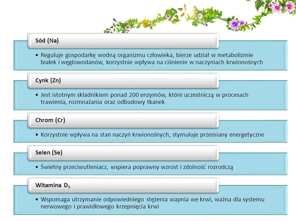 Jakie składniki poza minerałami zawiera Onyx Plus.