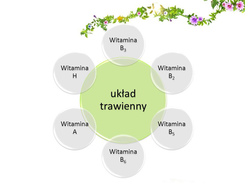 Wszystkie składniki pochodzą z ekologicznie czystych regionów.