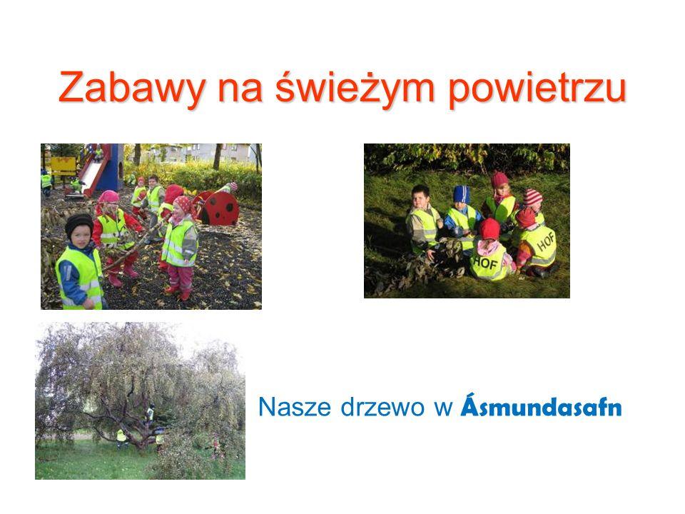 Zabawy na świeżym powietrzu Nasze drzewo w Ásmundasafn