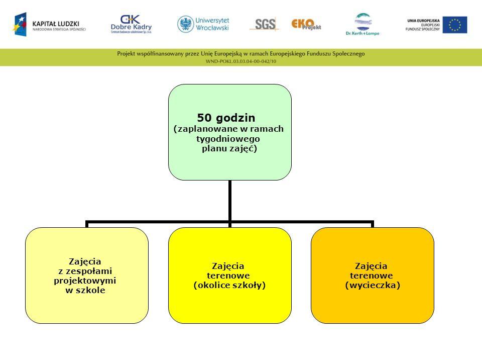 Dyrektor szkoły Zgłoszenie innowacji do Kuratorium Oświaty Umowa z Liderem projektu