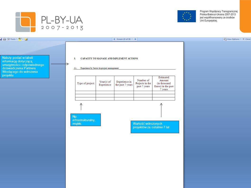 20 Należy podać w tabeli informację dotyczącą umiejętności i odpowiedniego doświadczenia Partnera Wiodącego do wdrożenia projektu Np. infrastrukturaln