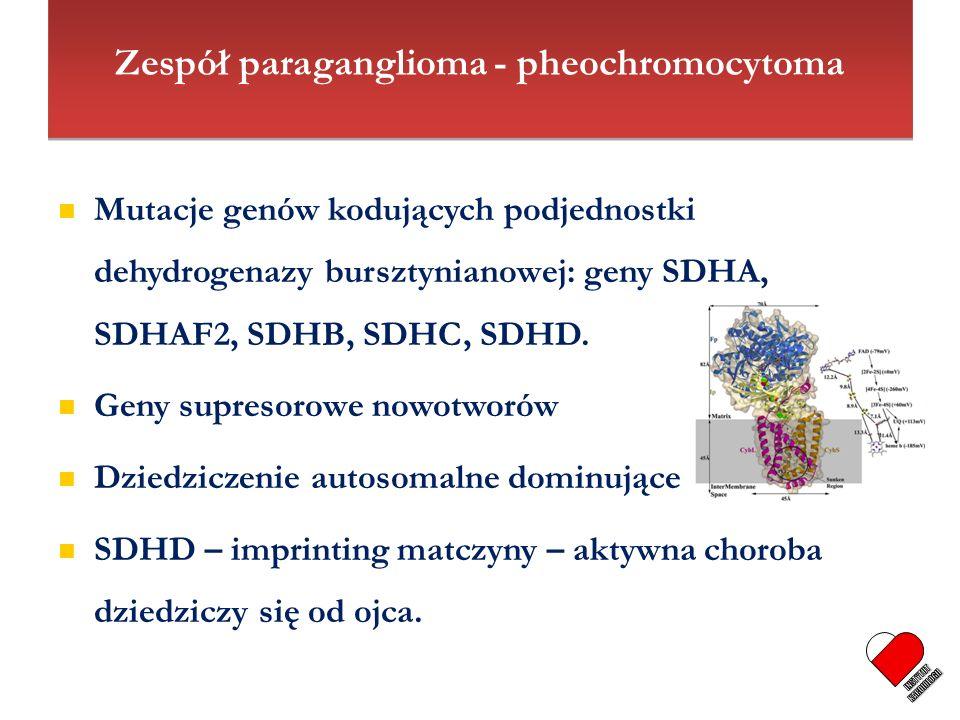 Zespół paraganglioma - pheochromocytoma Mutacje genów kodujących podjednostki dehydrogenazy bursztynianowej: geny SDHA, SDHAF2, SDHB, SDHC, SDHD. Geny