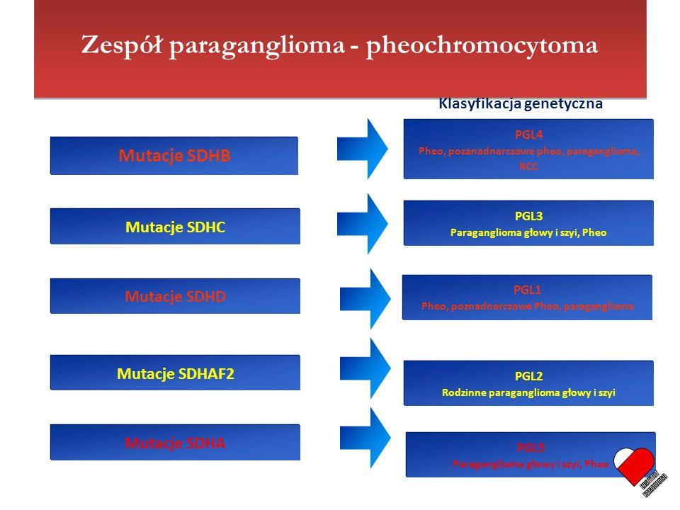 Mutacje SDHB Mutacje SDHC Mutacje SDHD Mutacje SDHAF2 Mutacje SDHA PGL4 Pheo, pozanadnerczowe pheo, paraganglioma, RCC PGL4 Pheo, pozanadnerczowe pheo