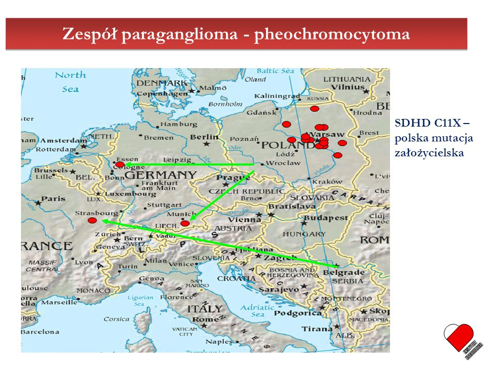 Zespół paraganglioma - pheochromocytoma SDHD C11X – polska mutacja założycielska