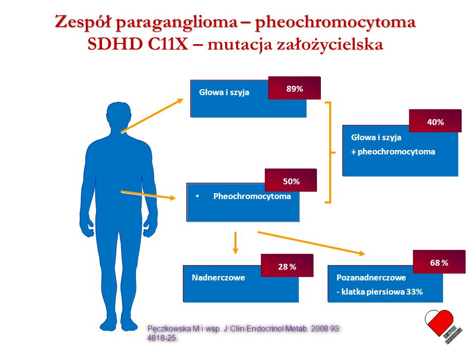 Zespół paraganglioma – pheochromocytoma Zespół paraganglioma – pheochromocytoma SDHD C11X – mutacja założycielska Głowa i szyja 89% Pheochromocytoma N