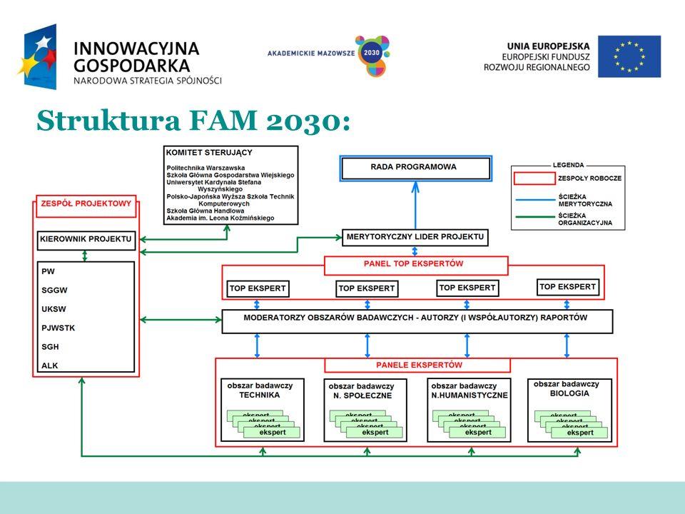 Struktura FAM 2030: