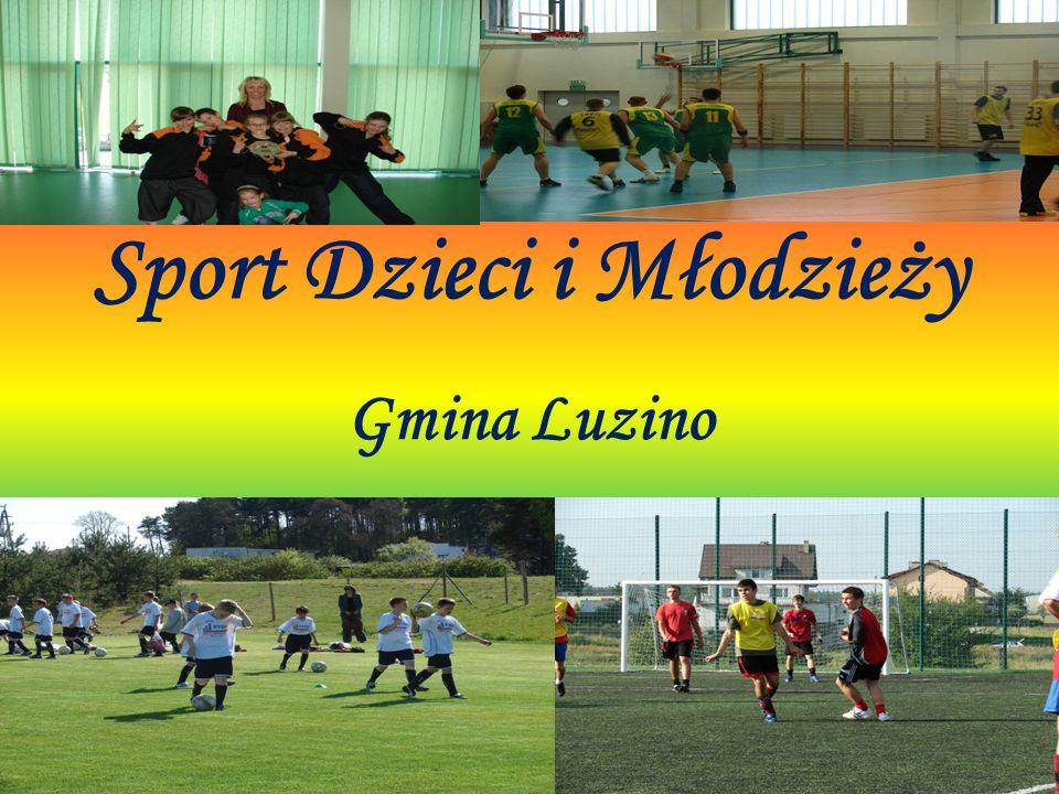Kaszubskie Towarzystwo sportowo - Kulturalne Jest to organizacja ściśle współpracująca z GOSRiT Luzino wspomagająca organizacje i realizacje licznych imprez sportowych, jak również organizująca różne zajęcia dla dzieci i młodzieży.