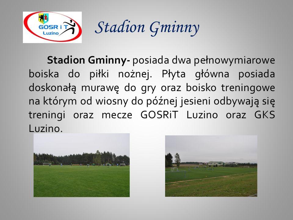 Turnieje dla szkół podstawowych Na Hali Widowiskowo-Sportowej GOSRiT odbywają się rozgrywki międzyszkolne dla szkół podstawowych z Gminy Luzino w grach zespołowych dla chłopców i dziewcząt takich jak: piłka ręczna, piłka nożna, koszykówka, biegi na 500m i 1000m.