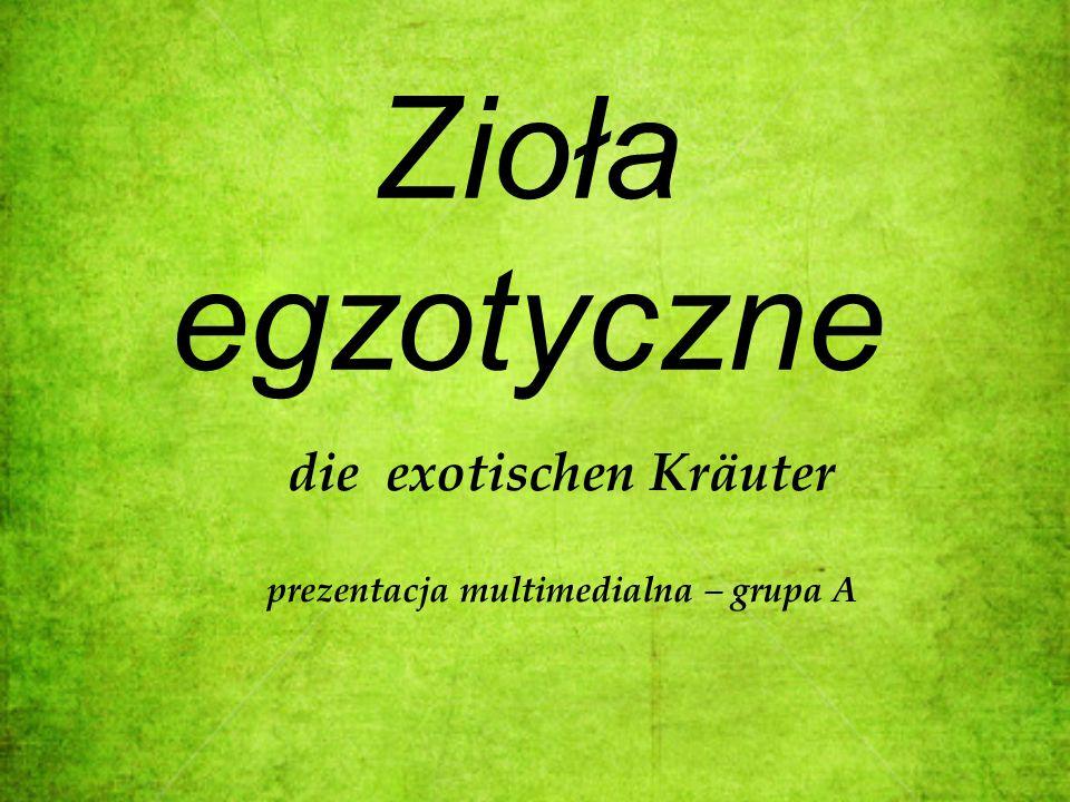 Zioła egzotyczne die exotischen Kräuter prezentacja multimedialna – grupa A