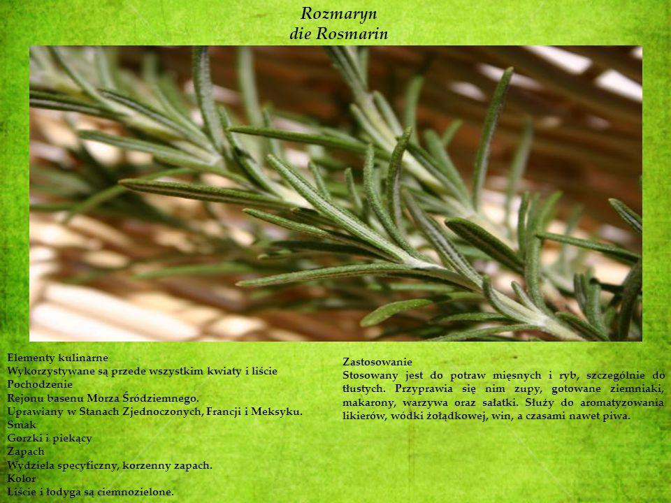 Rozmaryn die Rosmarin Elementy kulinarne Wykorzystywane są przede wszystkim kwiaty i liście Pochodzenie Rejonu basenu Morza Śródziemnego. Uprawiany w
