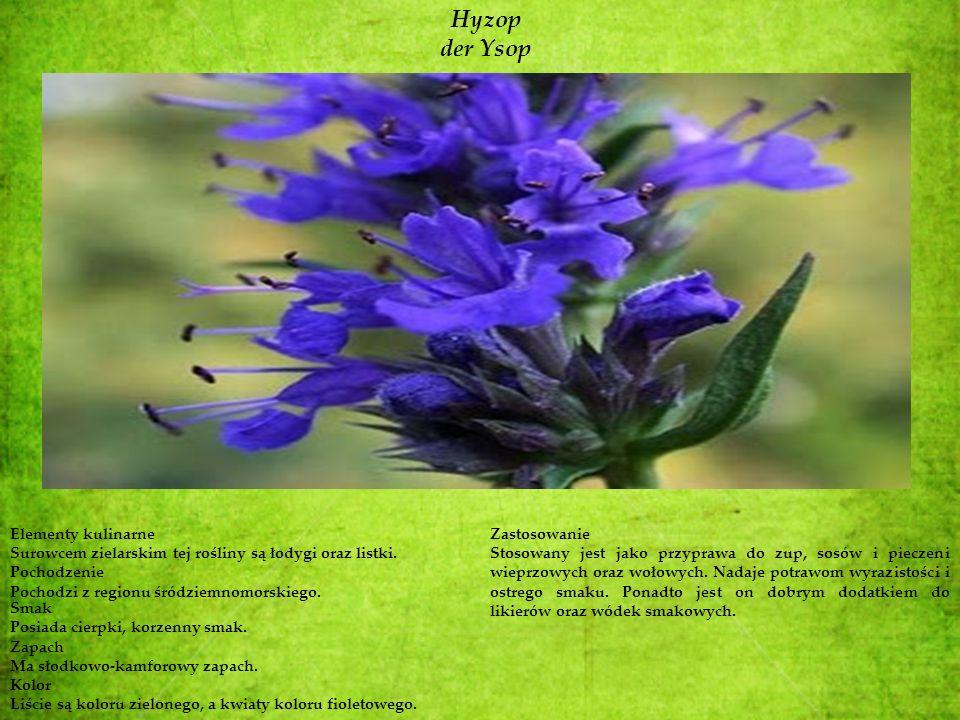 Hyzop der Ysop Elementy kulinarne Surowcem zielarskim tej rośliny są łodygi oraz listki. Pochodzenie Pochodzi z regionu śródziemnomorskiego. Smak Posi