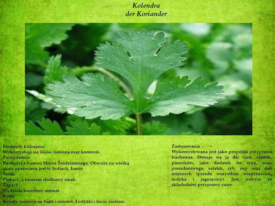 Kolendra der Koriander Elementy kulinarne Wykorzystuje się liście, nasiona oraz korzenie. Pochodzenie Pochodzi z basenu Morza Śródziemnego. Obecnie na