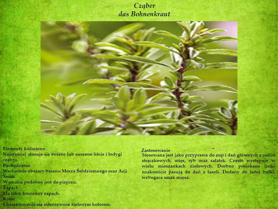 Cząber das Bohnenkraut Elementy kulinarne Najczęściej stosuje się świeże lub suszone liście i łodygi cząbru. Pochodzenie Wschodnie obszary basenu Morz