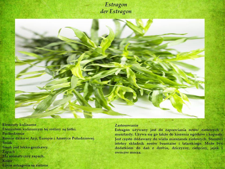 Estragon der Estragon Elementy kulinarne Elementem kulinarnym tej rośliny są listki. Pochodzenie Rośnie dziko w Azji, Europie i Ameryce Południowej. S