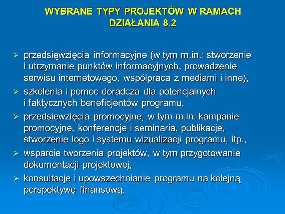 WYBRANE TYPY PROJEKTÓW W RAMACH DZIAŁANIA 8.2 przedsięwzięcia informacyjne (w tym m.in.: stworzenie i utrzymanie punktów informacyjnych, prowadzenie s