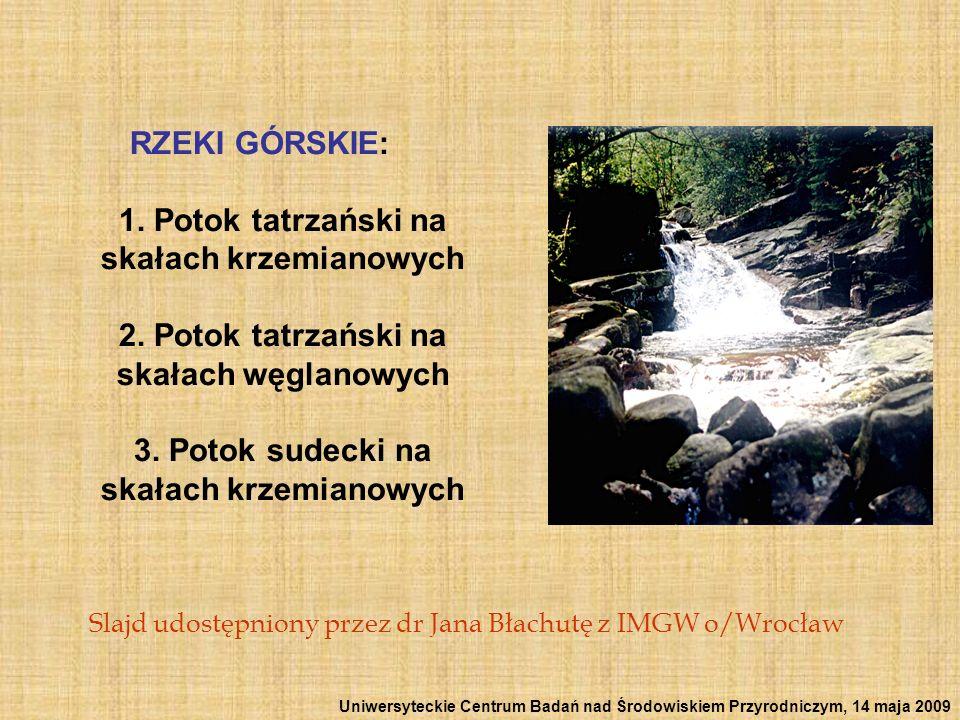 RZEKI GÓRSKIE: 1. Potok tatrzański na skałach krzemianowych 2. Potok tatrzański na skałach węglanowych 3. Potok sudecki na skałach krzemianowych Slajd
