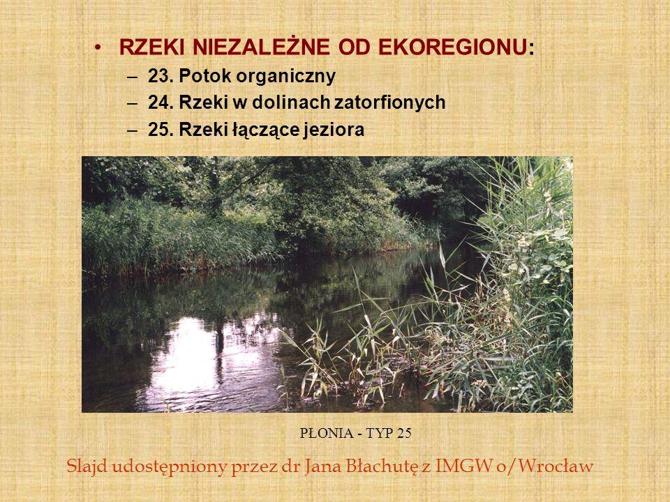 RZEKI NIEZALEŻNE OD EKOREGIONU: –23. Potok organiczny –24. Rzeki w dolinach zatorfionych –25. Rzeki łączące jeziora PŁONIA - TYP 25 Slajd udostępniony