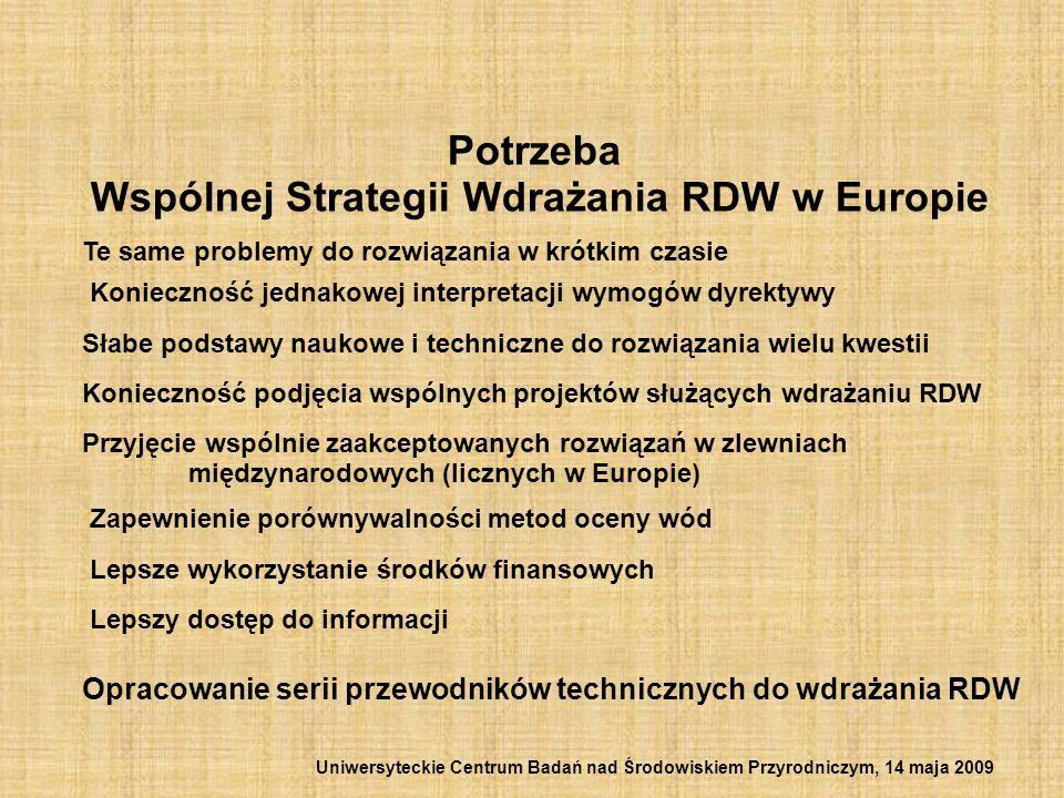 CIS (Common Implementation Strategy) WSW (Wspólna Strategia Wdrażania ) dokument nieformalny Wdrażanie RDW jest odpowiedzialnością każdego pojedynczego kraju.