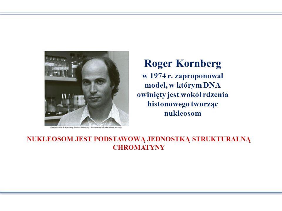 Roger Kornberg w 1974 r. zaproponował model, w którym DNA owinięty jest wokół rdzenia histonowego tworząc nukleosom NUKLEOSOM JEST PODSTAWOWĄ JEDNOSTK