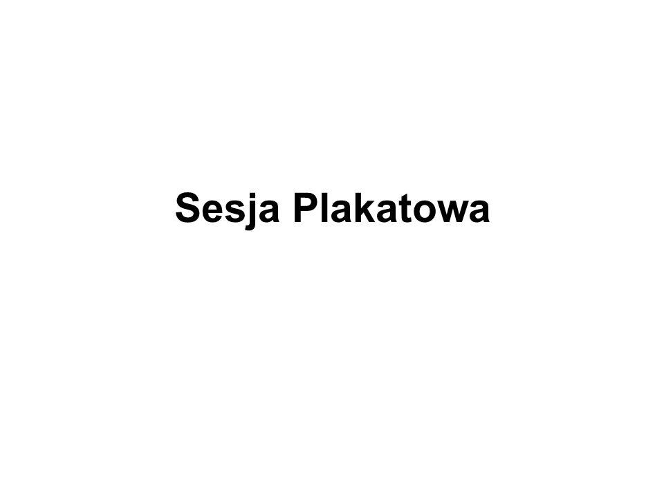 Sesja Plakatowa