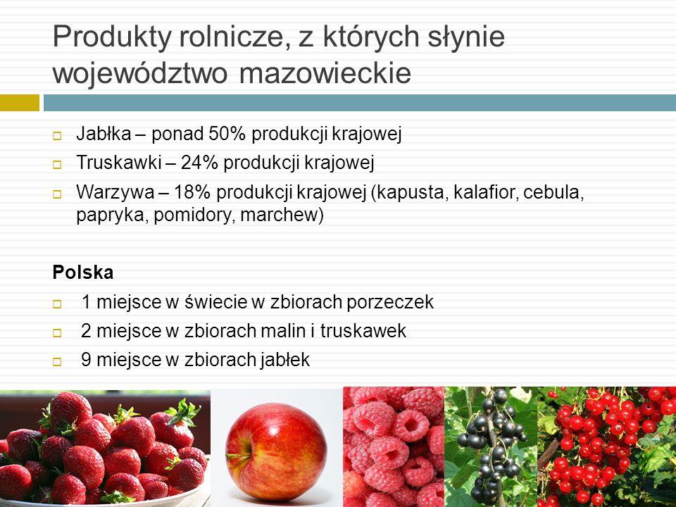 Produkty rolnicze, z których słynie województwo mazowieckie Jabłka – ponad 50% produkcji krajowej Truskawki – 24% produkcji krajowej Warzywa – 18% pro