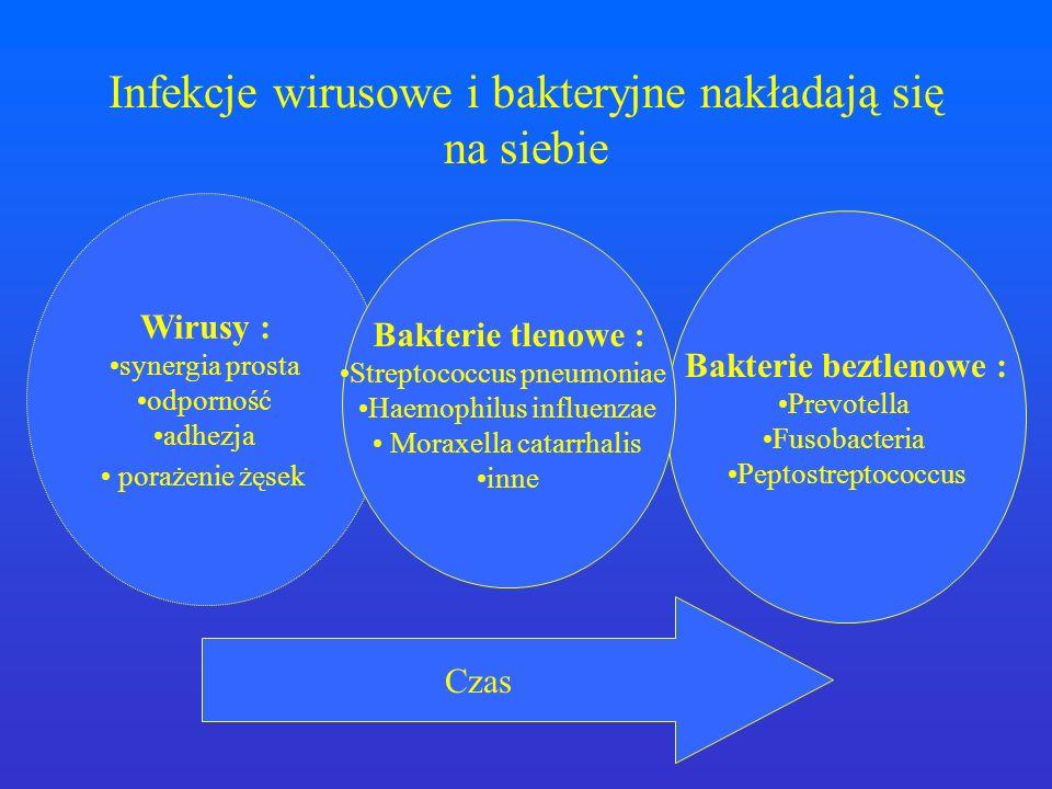 Bakterie beztlenowe : Prevotella Fusobacteria Peptostreptococcus Wirusy : synergia prosta odporność adhezja porażenie żęsek Czas Bakterie tlenowe : St