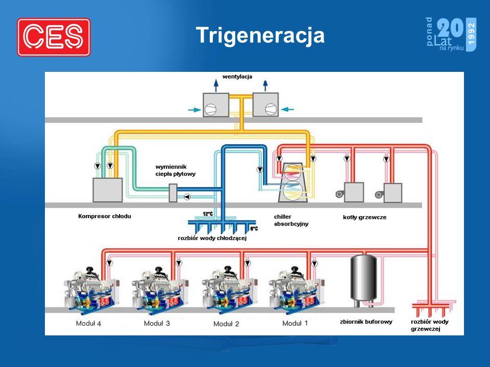 Trigeneracja