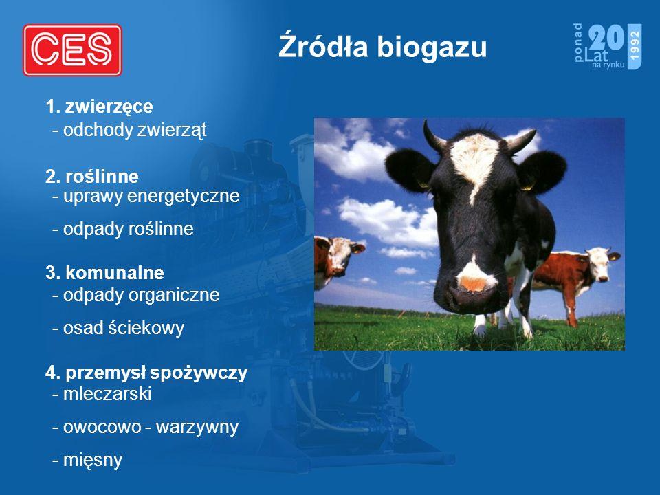 Źródła biogazu - odchody zwierząt - uprawy energetyczne - odpady roślinne - odpady organiczne - osad ściekowy - mleczarski - owocowo - warzywny - mięs