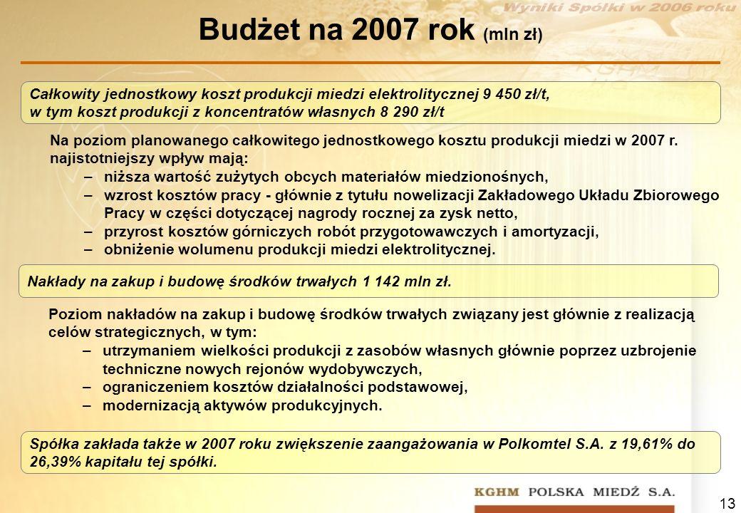 13 Budżet na 2007 rok (mln zł) Na poziom planowanego całkowitego jednostkowego kosztu produkcji miedzi w 2007 r. najistotniejszy wpływ mają: –niższa w