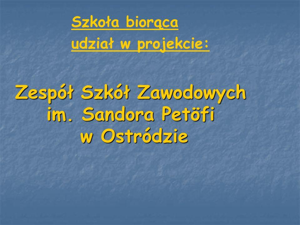Szkoła biorąca udział w projekcie: Zespół Szkół Zawodowych im. Sandora Petöfi w Ostródzie