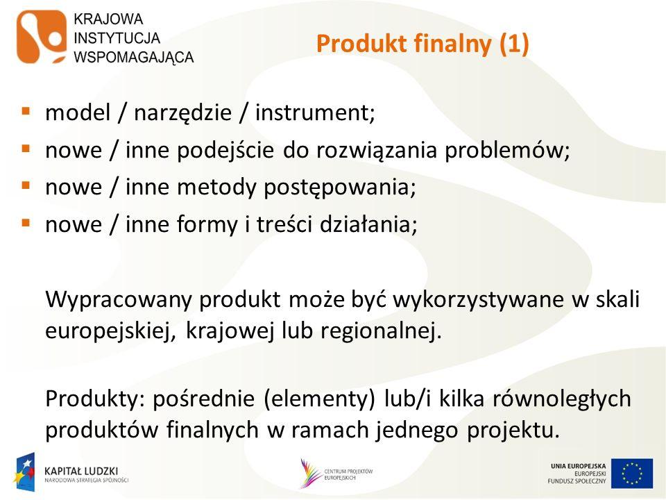 Produkt finalny (1) model / narzędzie / instrument; nowe / inne podejście do rozwiązania problemów; nowe / inne metody postępowania; nowe / inne formy