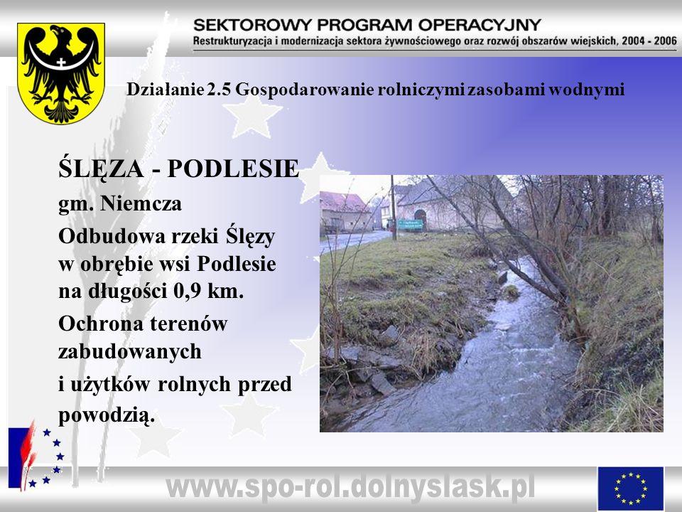 Działanie 2.5 Gospodarowanie rolniczymi zasobami wodnymi ŚLĘZA - PODLESIE gm. Niemcza Odbudowa rzeki Ślęzy w obrębie wsi Podlesie na długości 0,9 km.