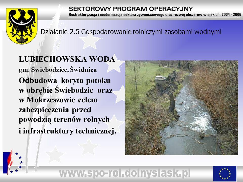 Działanie 2.5 Gospodarowanie rolniczymi zasobami wodnymi LUBIECHOWSKA WODA gm. Świebodzice, Świdnica Odbudowa koryta potoku w obrębie Świebodzic oraz