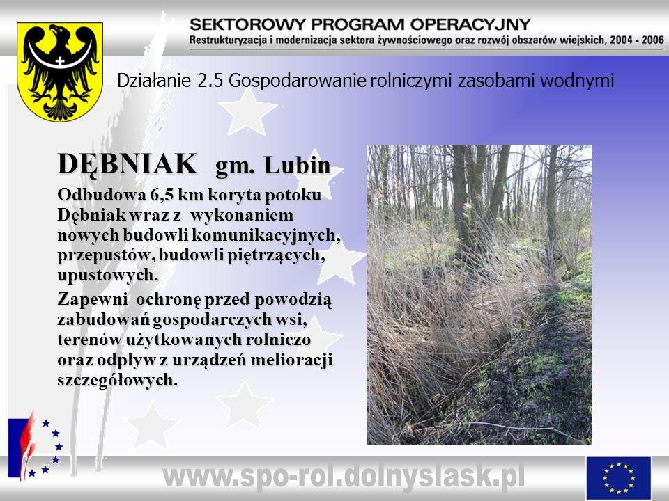 Działanie 2.5 Gospodarowanie rolniczymi zasobami wodnymi DĘBNIAK gm. Lubin Odbudowa 6,5 km koryta potoku Dębniak wraz z wykonaniem nowych budowli komu
