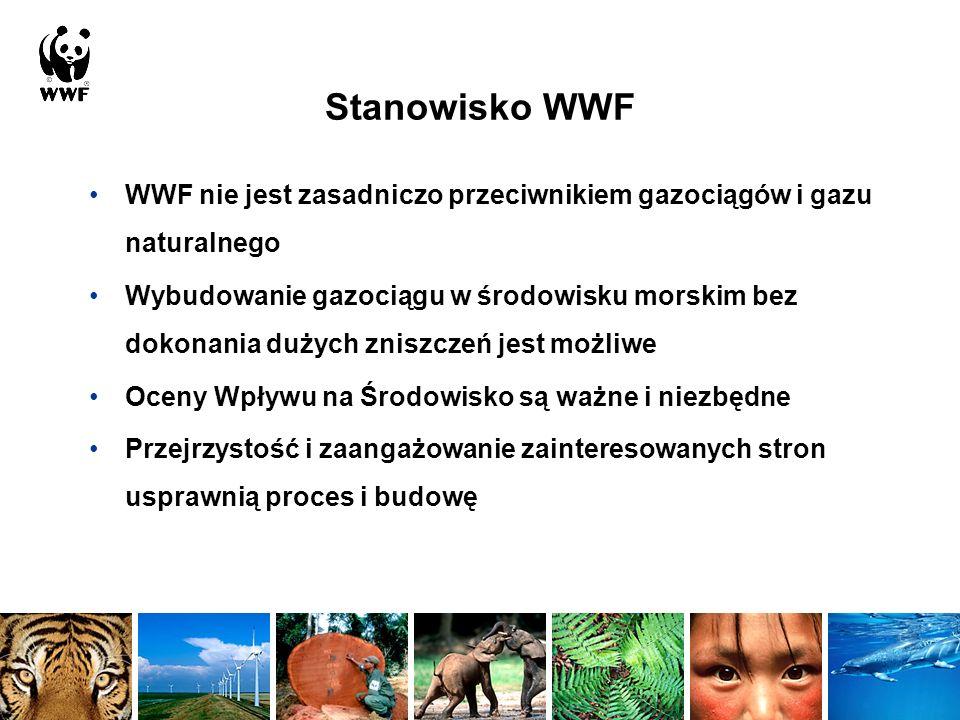Plan wystąpienia Krótki zarys aktualnych procedur Główne zagrożenia ze strony gazociągu dla różnorodności biologicznej oraz rodzaje ryzyka Braki informacyjne i niepewności w aktualnej Ocenie Wpływu na Środowisko Procedury Oceny i harmonogram czasowy Sugestie WWF