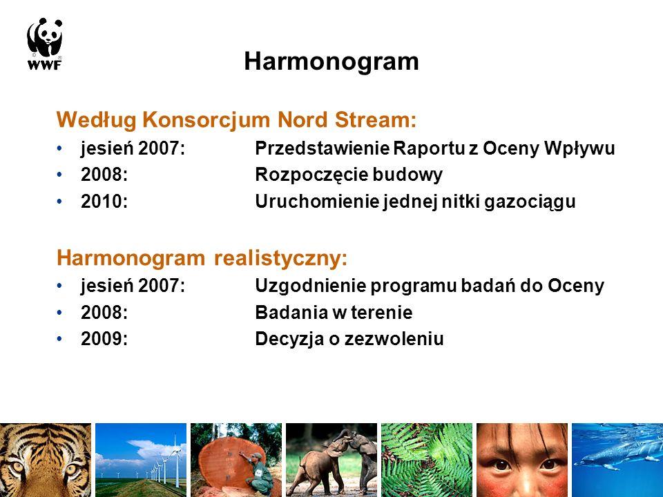 Dziękuję! Więcej informacji: www.wwf.dewww.wwf.de, www.bsh.dewww.bsh.de