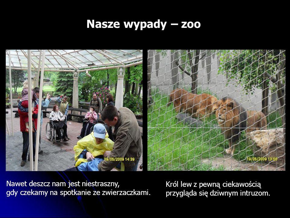 Nasze wypady – zoo Nawet deszcz nam jest niestraszny, gdy czekamy na spotkanie ze zwierzaczkami.