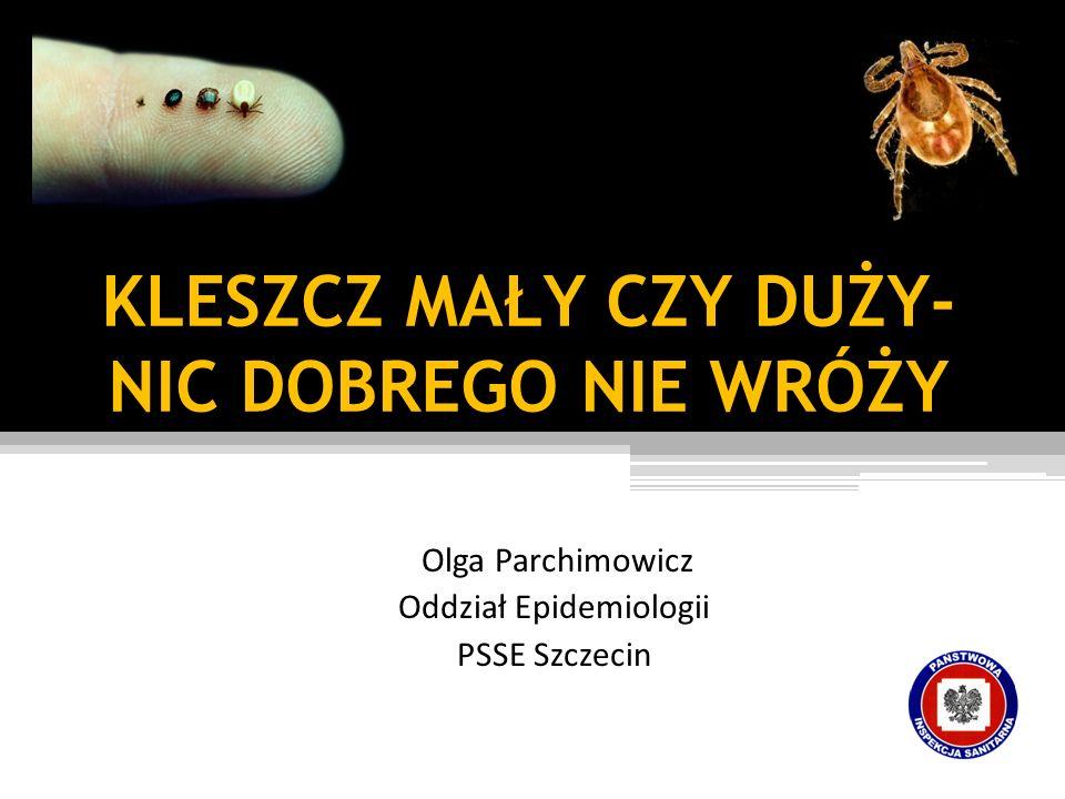 KLESZCZ MAŁY CZY DUŻY- NIC DOBREGO NIE WRÓŻY Olga Parchimowicz Oddział Epidemiologii PSSE Szczecin