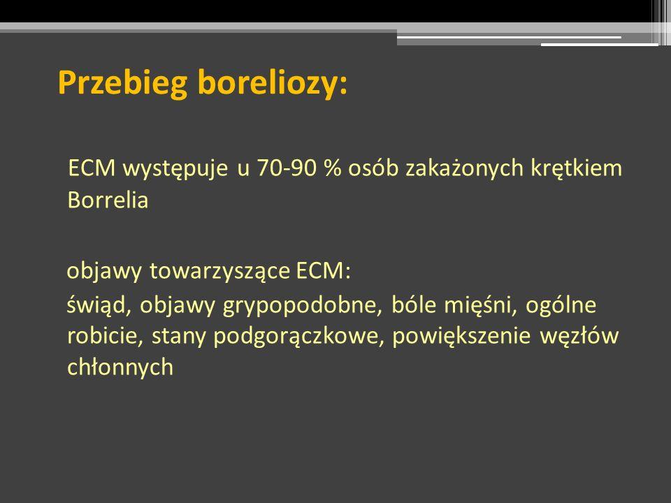 Przebieg boreliozy: ECM występuje u 70-90 % osób zakażonych krętkiem Borrelia objawy towarzyszące ECM: świąd, objawy grypopodobne, bóle mięśni, ogólne