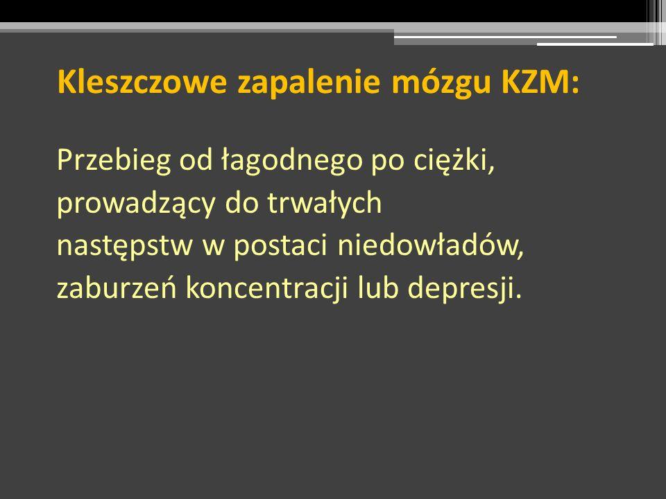 Kleszczowe zapalenie mózgu KZM: Przebieg od łagodnego po ciężki, prowadzący do trwałych następstw w postaci niedowładów, zaburzeń koncentracji lub dep