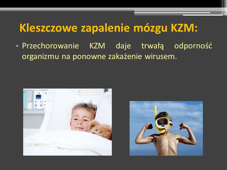 Kleszczowe zapalenie mózgu KZM: Przechorowanie KZM daje trwałą odporność organizmu na ponowne zakażenie wirusem.