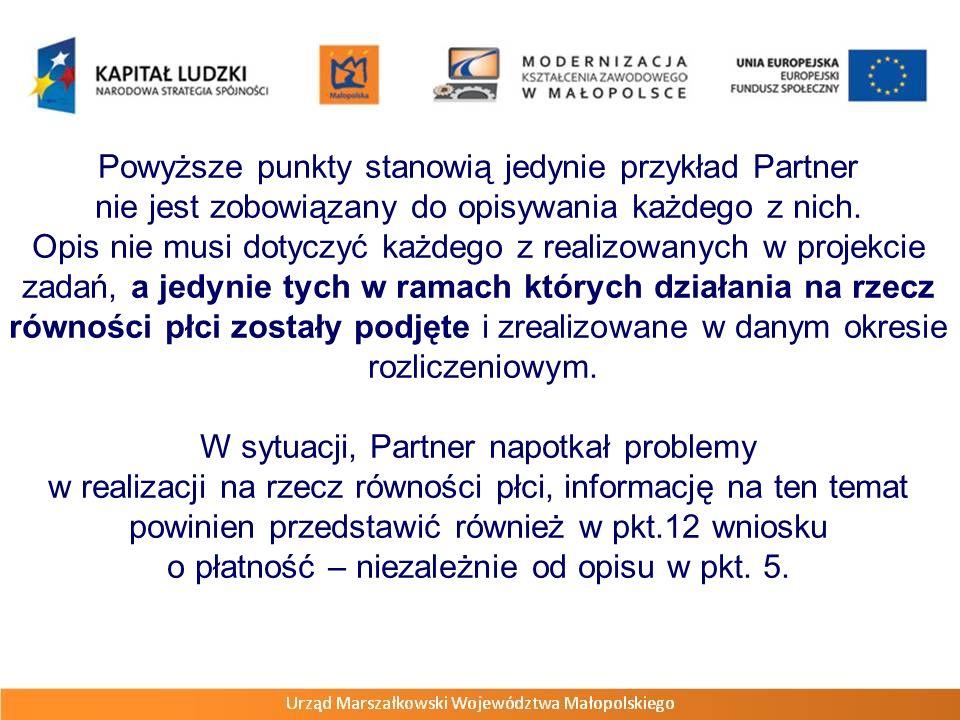 Powyższe punkty stanowią jedynie przykład Partner nie jest zobowiązany do opisywania każdego z nich. Opis nie musi dotyczyć każdego z realizowanych w