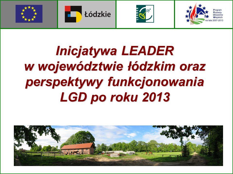 Inicjatywa LEADER w województwie łódzkim oraz perspektywy funkcjonowania LGD po roku 2013