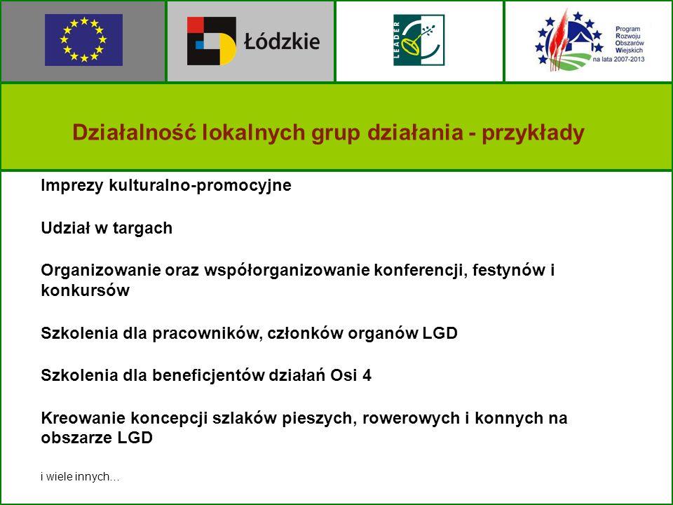 Działalność lokalnych grup działania - przykłady Imprezy kulturalno-promocyjne Udział w targach Organizowanie oraz współorganizowanie konferencji, fes