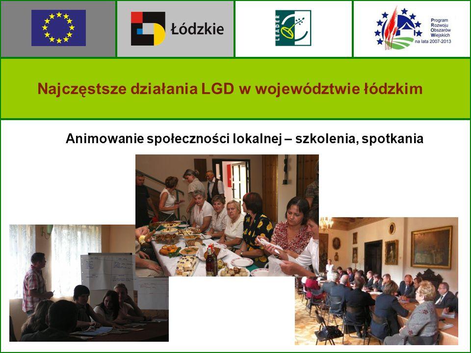 Animowanie społeczności lokalnej – szkolenia, spotkania Najczęstsze działania LGD w województwie łódzkim